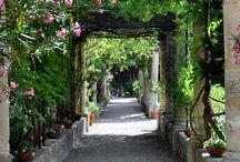 France // Jardins de L'abbaye Saint-Andre