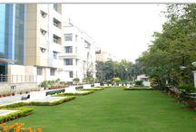 IITM Offers Post Graduate Program in Delhi