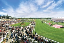 Doncaster Racecourse / Doncaster Racecourse (also known as the Town Moor course) is a racecourse in Doncaster, South Yorkshire, England. It hosts two of Great Britain's 31 Group 1 flat races, the St Leger Stakes and the Racing Post Trophy.