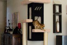 Katzenmöbelideen
