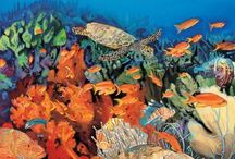 Camouflage Books-Teacher Resources