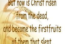 "*FIRST FRUITS FEAST / Yahshua's  Resurrection. 3rd Feast Leviticus 23:11 ""on the morning after the Sabbath"" following Unleavened Bread. The feast for acknowledging the fertility of the land He gave the Israelites. They bring the early crops and wave the sheaf before the Lord. The modern church calls this Easter after Ishtar the pagan god for fertility, using the rabbit and the egg as symbols. It's not what God intended... I'm going back to my roots as a believer in ONE God and that's why I've become Messianic ~!~ / by Janet Marie"