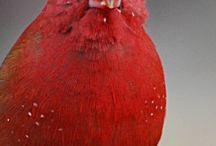 Røde fugler
