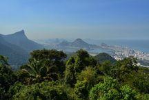 Parques de Río de Janeiro / Los enormes parques y selvas tropicales que salpican el paisaje de la ciudad de Río de Janeiro