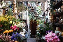 Florist shop set up