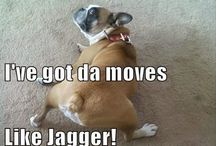 Got the moves like jagger