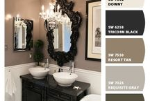 Guest Bathroom / by Tracy Budreau