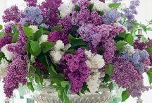 Bouquets de fleurs / by Louisa D