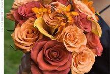Possible Wedding Flowers / by Brandi Briggs