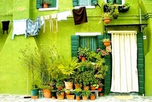 Green Inspired / by Gabriella Dehod
