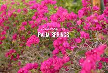 Blogger's Guide to Palm Springs