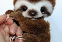 cute baby animals / Baby animals being cute