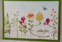 flowering fields / + zum neuen Abschnitt
