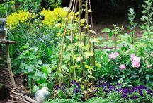 Gardening e dintorni
