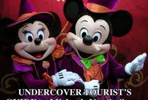 Disney Fall