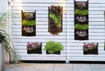 Donice kieszeniowe / Już teraz można zaprojektować własną aranżację wiszącego ogrodu, w wybranym przez siebie miejscu bez pomocy architektów zieleni i specjalistycznego sprzętu.