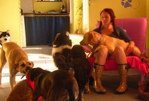 Staff & Volunteers @ Doggy Pause / There are some fantastic people who have worked at Doggy Pause and here are some of their pics with the dogs, of course. www.doggypause.com.au