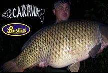 Carp Fishing / Carp Fishing vids