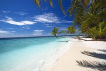 Malediven Strandvakantie / Meer dan duizend ongerepte eilandjes en atollen, een kristalheldere zee, variërend in kleur van azuurblauw tot smaragdgroen, hagelwitte stranden en de mooiste hotels ter wereld. U vindt het allemaal op de Malediven. Boek nu de perfecte strandvakantie of combineer de Malediven met Sri Lanka met Original Asia!