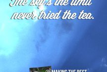 Drink. More. Tea. / Our campaign to showcase Iaso Tea and the health benefits it has.