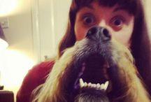 Epic Dog Beards / Epic Dog Beards