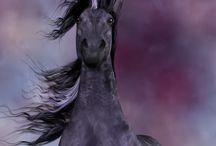 Unicorn *w*