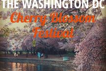 Washington DC, USA / Find tips, tricks, and recommendation for visiting Washington, DC.