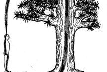 tree healing