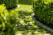 Pavé - Terrasse- Serre -Jardin