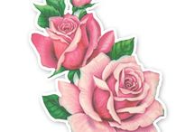 fiori clipart