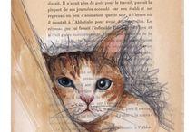 Kitties / Kitties