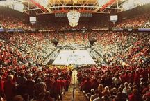 Full House of Cards / Louisville Cardinal fans representing the red and black  / by University of Louisville