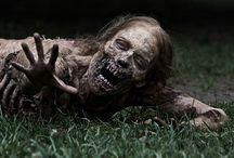Walking Dead / Apocalyps survival