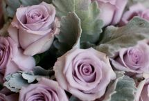 Flowers / by Lauren Paschall