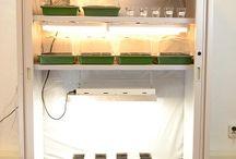 I Love To Make A Marijuana Clone Box / 7 Steps to make a marijuana clone / germinate box