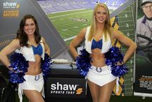 Trade Shows / A variety of photos from some of the many trade shows Shaw Sports Turf attends throughout the country.