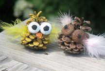 Things to do with pinecones