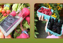 Farmer's Market / We love the farmer's market season!