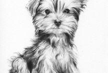 Pes a umenie