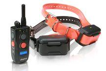 Dog Training Collars / Training Collars, Multi Dog Training Collars and more.