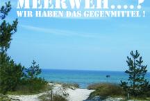 Meerweh / #Ostsee, #Strand , #Meerblick, #Seeluft, #Ferienhaus mit Meerblick, #Rügen, #InselRügen,