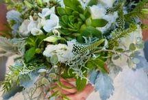 wedding flowers / by Brandi Martinez