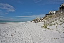 South Walton Beaches, FL: All 16 Spots! / Discover one of Florida's most beautiful destinations, South Walton, which features 16 distinct beaches with their own style and attractions. From artsy to exotic, South Walton has a personal paradise waiting for you! Find the top activities, restaurants, vacation rentals and events. South Walton and 30a welcome you in style! https://www.itrip.net/destinations/fl#Beaches-Of-South-Walton