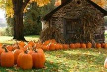 Fall is in the Air / Fall. The most refreshing of seasons. Crisp air, beautiful scenery and pumpkin flavored everything.