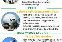 Disney Paris and Florida