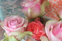 Beautiful Blooms / by PaintedLadies