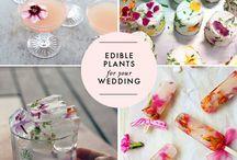 Weddings & BloomBites / Fleur de mooiste dag van je leven op door het gebruik van eetbare bloemen in hapjes en drankjes