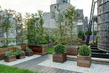 garden_rooftop