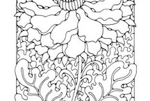 coloring pages-adult / by Betty Farnsworth