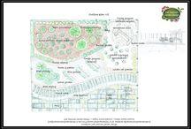 Coastal feel garden design by Judi Samuels